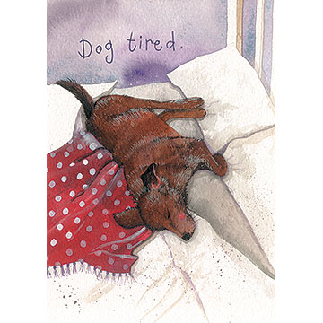 catalog/products/animal-antics/dog-tired-card.jpg