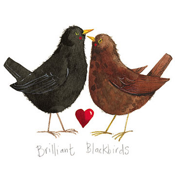 catalog/products/brilliant-birds/brilliant-blackbirds.jpg