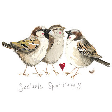 catalog/products/brilliant-birds/sociable-sparrows.jpg