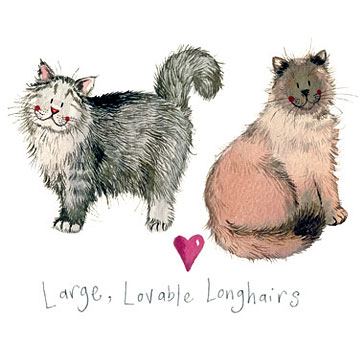 catalog/products/charismatic-cats/large-lovable-longhairs.jpg