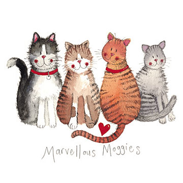 catalog/products/charismatic-cats/marvellous-moggies.jpg