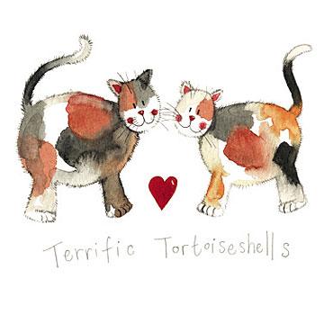 catalog/products/charismatic-cats/terrific-tortoiseshells.jpg