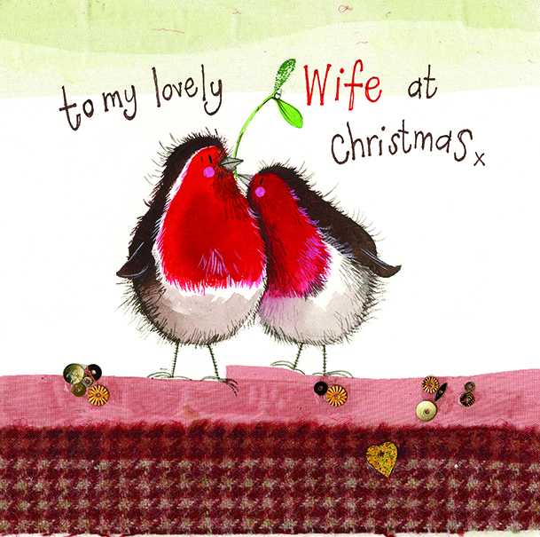 Wife robin christmas card alex clark art wife robin christmas card m4hsunfo
