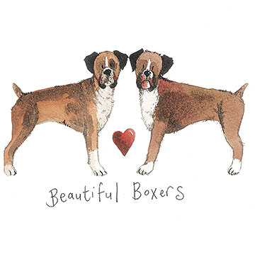 catalog/products/delightful-dogs/beautiful-boxers.jpg