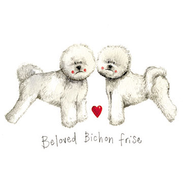 catalog/products/delightful-dogs/beloved-bichon-frise.jpg