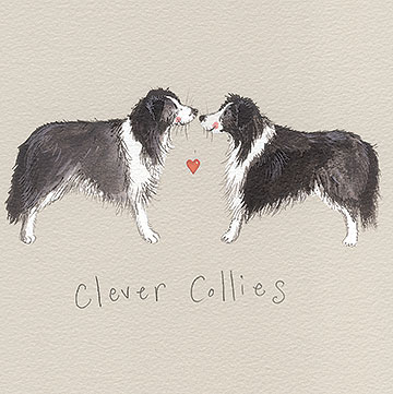 catalog/products/delightful-dogs/clever-collies.jpg