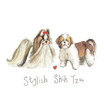 catalog/products/delightful-dogs/stylish-shih-tzu.jpg