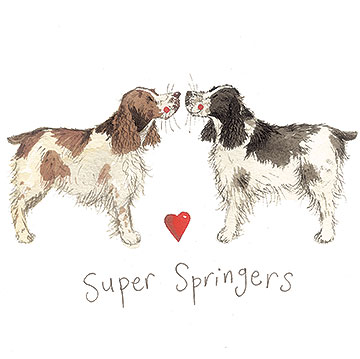 catalog/products/delightful-dogs/super-springers.jpg