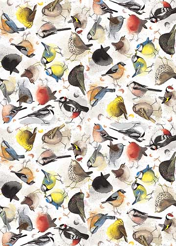 catalog/products/gift-wrap/birds.jpg