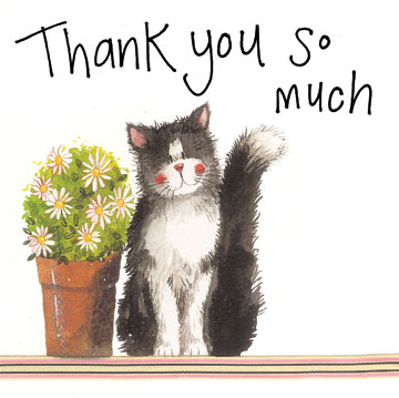 catalog/products/large-sparkle-cards/thank-you-cat.jpg