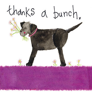 catalog/products/large-sparkle-cards/thanks-a-bunch.jpg