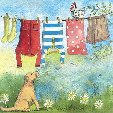 catalog/products/square-cards/washing-line.jpg